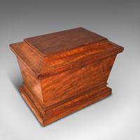 Large Antique Sarcophagus Cellarette, English, Mahogany, Wine Cooler, Regency (7 of 12)