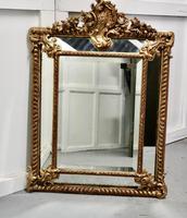 Stunning Napoleon III French Cushion Mirror (5 of 7)