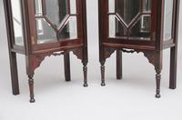 Pair of Early 20th Century Mahogany Display Cabinets (9 of 9)