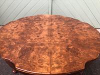 Antique Burr Walnut Coffee Table (5 of 5)