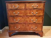 Superb Antique George III Burr Walnut Chest (6 of 6)