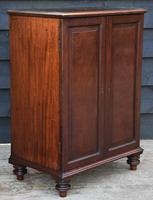 Unusual Georgian Small Proportioned Mahogany Cabinet / Cupboard with Interior Drawers (8 of 12)