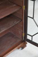 Astragal Glazed Bookcase (11 of 12)