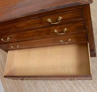 Chest of Drawers Victorian Mahogany 19th Century Straightedge (8 of 9)