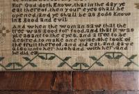 George IV English Adam & Eve Silk on Linen Needlework Sampler, 1825 in Original Frame (8 of 9)