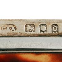 George V Silver & Tortoise Shell Box (8 of 8)