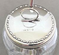 Superb Silver & Cut Glass Preserve Pot & Spoon (2 of 7)