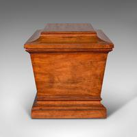 Large Antique Sarcophagus Cellarette, English, Mahogany, Wine Cooler, Regency (4 of 12)