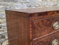 Regency Flame Mahogany Bow Front Chest of Drawers (14 of 17)