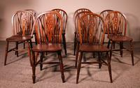 Set of 10 Windsor Wheelback Chairs 19th Century -  England (2 of 11)