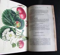1833 The Practical Gardener & Modern Horticulturist by Charles McIntosh, 2 Volume Set (6 of 8)