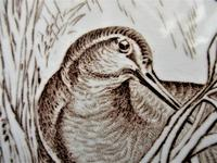 Wedgwood 8 inch tile with Snipe on nest, 1876 (3 of 3)