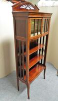 Art Nouveau Mahogany Cabinet Bookcase (4 of 7)
