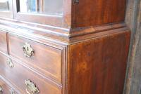 George I Walnut Double Dome Bookcase on Chest (9 of 10)