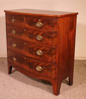 19th Century Mahogany Bowfront Chest of Drawers - England (3 of 8)