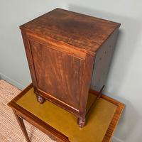 Spectacular Small Regency Antique Mahogany Collectors Cabinet (7 of 8)