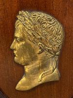 Pair of Interesting 19th Century Gilded Bronze Alexander The Great & Napoleon Cameo Plaques (3 of 29)