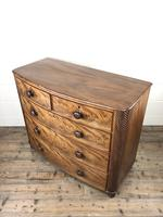 19th Century Mahogany Bow Front Chest of Drawers (6 of 12)