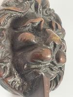 Architectural Early 19th Century Small William Ivbronze Lion Door Knocker (3 of 15)