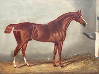 Victorian Oil Painting Chestnut Horse Portrait In Stable Signed Edwin Loder (3 of 42)
