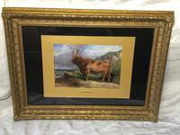 Victorian Scottish Highland Painting of Cattle by Aster Richard Chilton Corbould (12 of 40)
