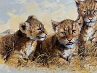 Exceptional 'pride Of Lion Cubs' Large Wildlife Oil Painting By 'silvia Duran' (4 of 12)