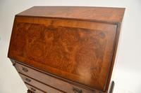 Antique Burr  Walnut Writing Bureau (3 of 9)