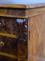 Victorian Burr Walnut Wellington Chest (7 of 10)