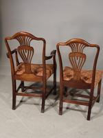 Good Set of 8 '6+2' Mahogany Framed Chairs by Marsh, Jones & Cribb (5 of 9)