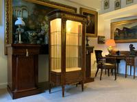 Exceptional 19th Century French Kingwood Parquetry Gilt Metal Vitrine Display Cabinet (7 of 17)