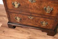 Burr Walnut Chest of Drawers c1890 (12 of 15)