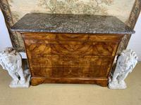 19th Century Burr Walnut Marble Top Commode (8 of 8)