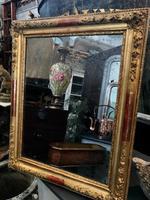 19th Century French Gilt Landscape / Portrait Mirror