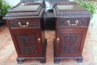 Rare Pair of Mahogany Adams Style Pot Cupboards 1820 (10 of 10)