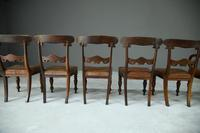 6 William IV Walnut Dining Chairs (6 of 9)