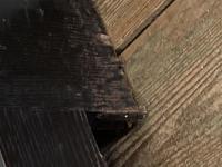 Victorian Oak Linen Chest (15 of 17)