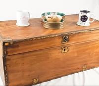 19th Century Camphor Wood Trunk Brass Fittings (4 of 7)