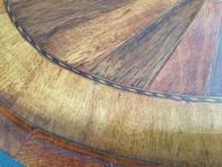 Specimen Woods Tray (8 of 9)