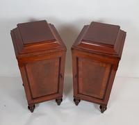 Pair of Regency Mahogany Pedestal Cabinets (2 of 8)