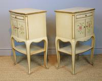 Pretty Pair of French Painted Bedside Cabinets (5 of 7)