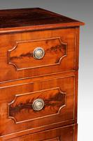 Pair of Late 18th Century Mahogany Cupboards (2 of 6)