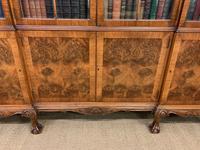 Shapland & Petter Burr Walnut Bookcase (11 of 23)