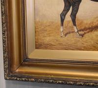 Monarch, Oil Painting of a Horse by William Eddowes Turner (6 of 8)