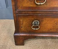 Georgian Style Burr Walnut Bureau (10 of 16)