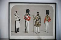 Costumes of the First or Grenadier Regiment (13 of 14)