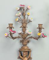 Well Formed Pair of Mid 19th Century Bronze Wall Lights (4 of 7)