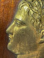 Pair of Interesting 19th Century Gilded Bronze Alexander The Great & Napoleon Cameo Plaques (17 of 29)