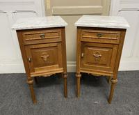Pair of French Marble Top Bedside Cupboards (4 of 13)