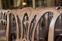 10 Chippendale style Mahogany Dining Chairs (3 of 5)