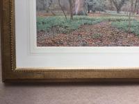 Wilmot Pilsbury Watercolour - Woodland Scene (3 of 3)